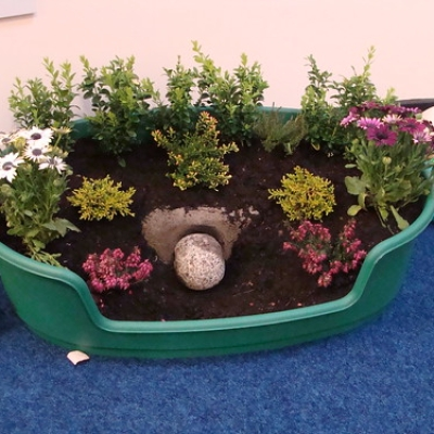 """Easter Garden Competition • <a style=""""font-size:0.8em;"""" href=""""http://www.flickr.com/photos/43862256@N03/5845885466/"""" target=""""_blank"""">View on Flickr</a>"""